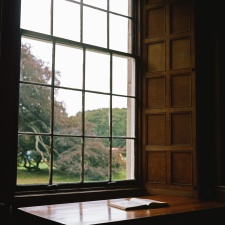 book, table, tree, window, forest, grass