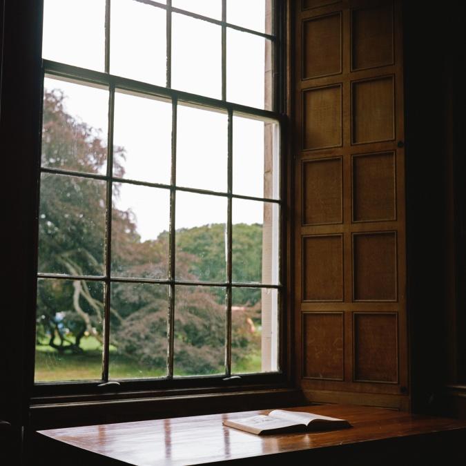 taulukko, kirja, ruoho, metsä, ikkuna, puu