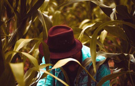 hat, man, plant, leaf, corn, jacket, photo model
