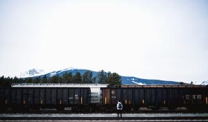 Hombre, ferrocarril, vagón, carga, transporte, montaña, árbol