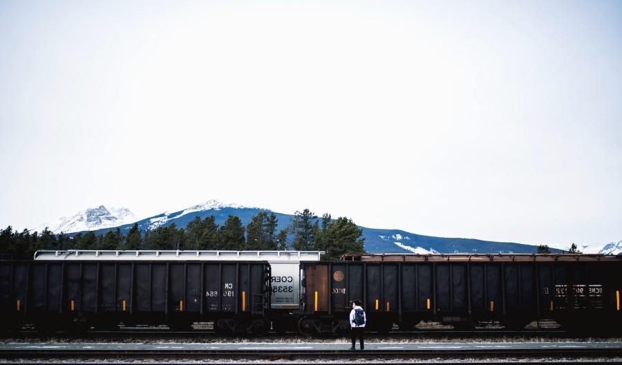 čovjek, željeznica, kola, tereta, prijevoz, planine, stabla