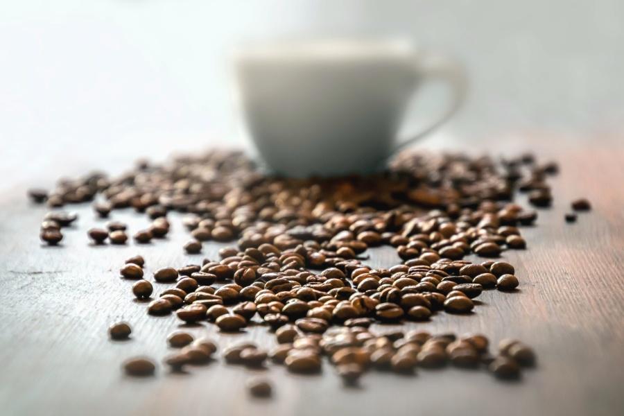 Caffè, grano, tazza, bere, tavola, pianta