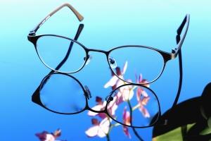brýle, skla, květina, reflexe, kovové