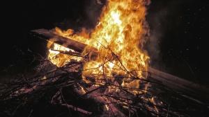 brand, filial, hot, flammor, rök, trä