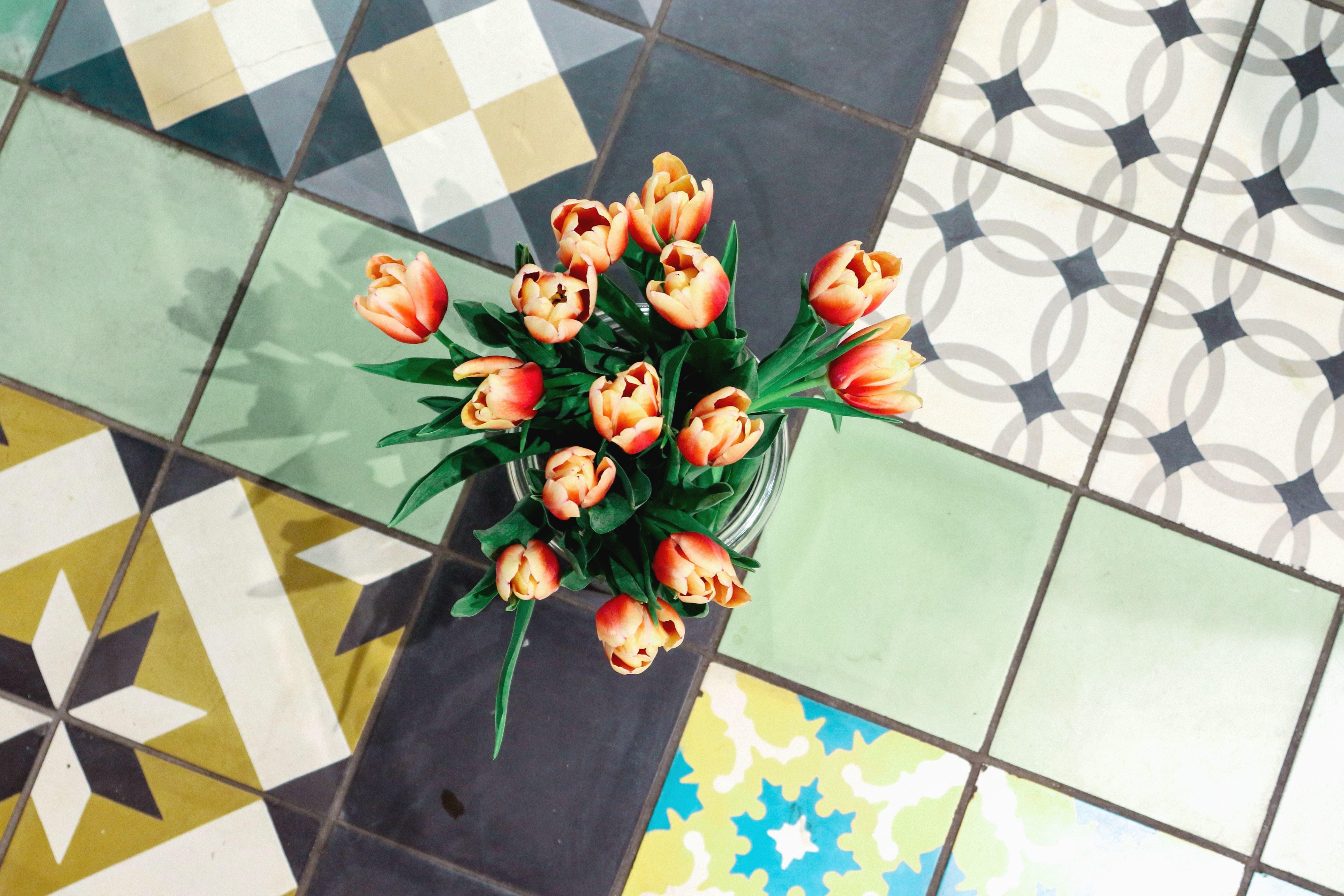 Lampada Fiore Tulipano : Foto gratis: tulipano vaso piastrelle decorazione