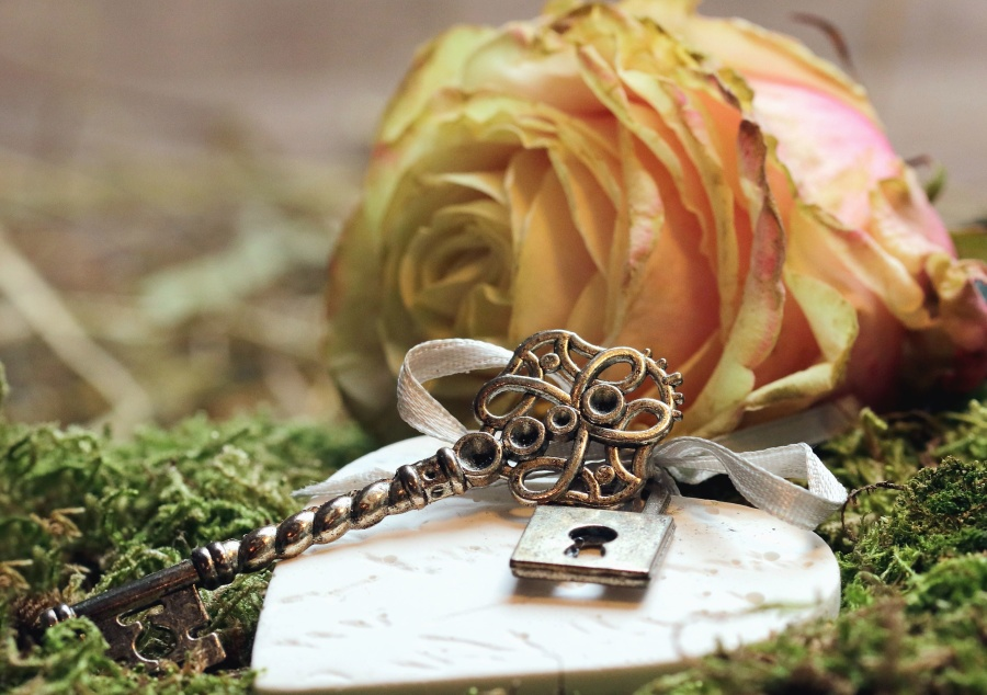 rose, petal, plant, key, metal, grass, heart, decoration