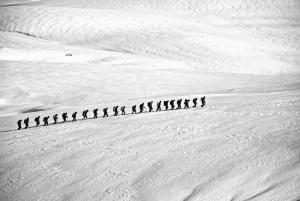 snow, winter, mountain climber, man, cold, mountain