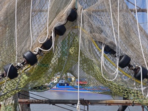 net, boat, fisherman, sea, fish, rope, fence
