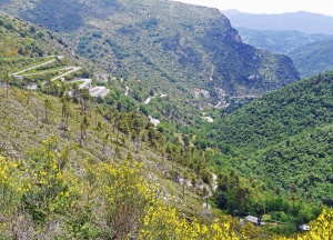 valley, mountain, landscape, sky, forest, rocks, hill