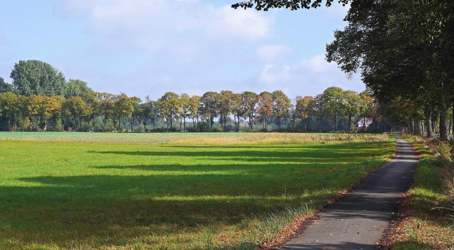 Landschaft, Feld, Gras, Himmel, ländlich, Land, Wiese, Straße, Sommer, Wolke