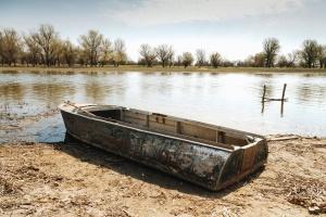 boat, water, tree, coast, lake