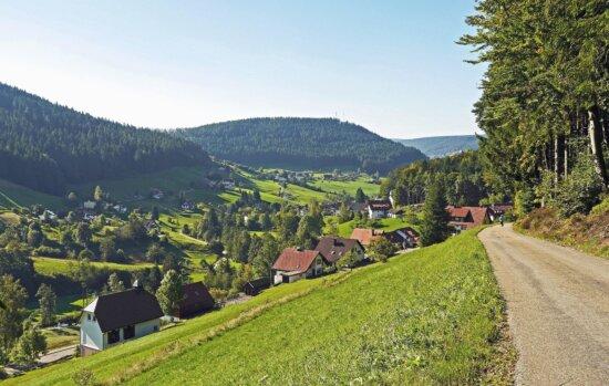landscape, mountain, sky, grass, tree, meadow, house