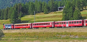 train, passenger, mountain, forest, vehicle