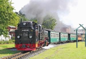 Locomotiva, veicolo, vapore, fumo, passeggero, vagone, legno, erba, ferrovia