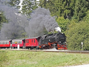 mozdony, vonat, jármű, füst, erdő, utas, attrakció, idegenforgalmi, steam