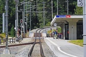 Gara, transport, transport, tren, cai ferate, oameni, pădure