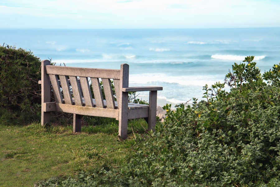 sky, plant, sea, travel, water, summer, bench