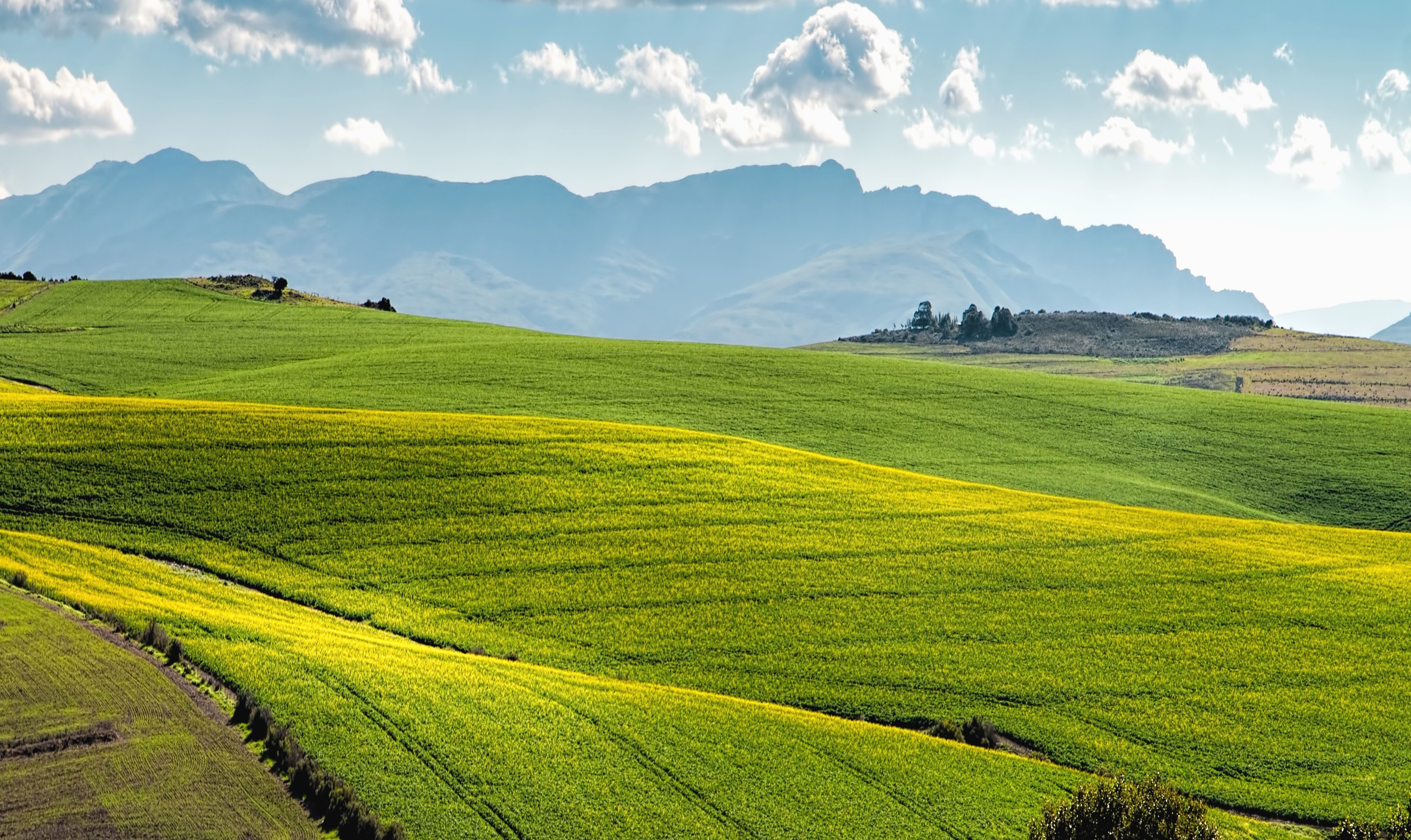 Free picture: grassland, field, grass, landscape, meadow ...