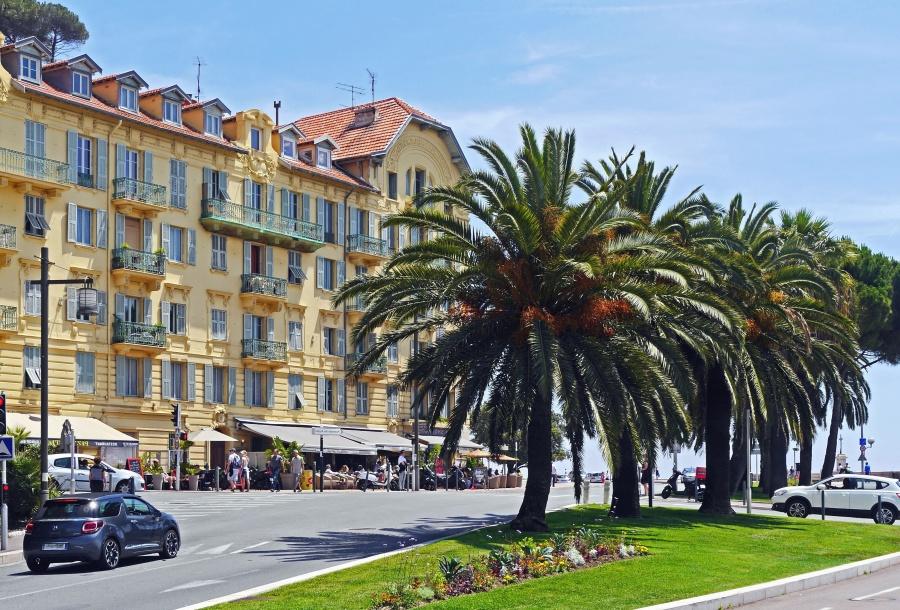 palm, road, building, travel, tourism, car, road