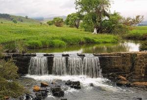 Diga, acqua, erba, paesaggio, albero, riflessione, pietra