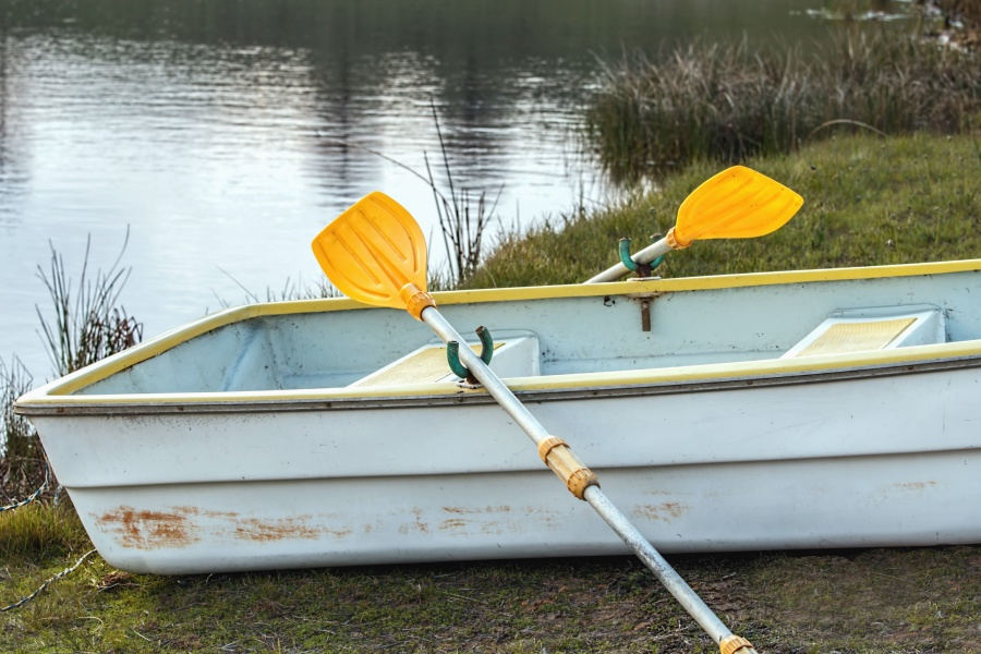 boat, lake, coast, water, grass, paddle