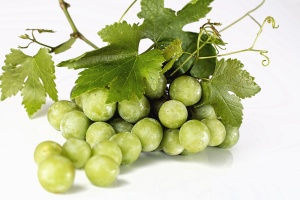 grape, fruit, produce, food, vineyard, leaf