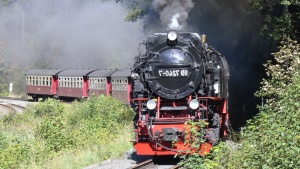 steam locomotive, smoke, steam, transport, traveler, grass, attraction, railroad