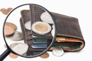 wallet, metal, paper, money, magnifier, leather, glass