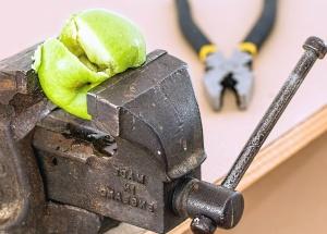 clamp, plain, metal, tool, apple, fruit