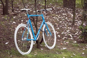 bicycle, wood, forest, vehicle, wheel, nature