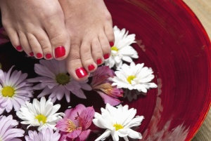 foot, nail, color, flower, petal, pot, plant, woman