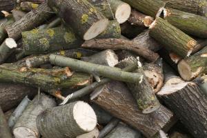 Legno, legna da ardere, struttura