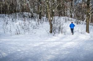 manusia salju, hutan, musim dingin, dingin, es