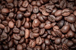 Café, plante, cuit, noyau, boire