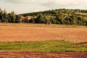 tractor, field, forest, hill, grass, machine