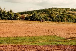 trekker, veld, bos, heuvel, gras, machine