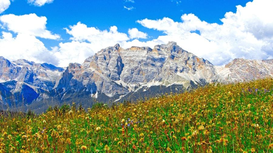 Berg, Wiese, Wolke, Stein, Landschaft, Pflanze, Gras