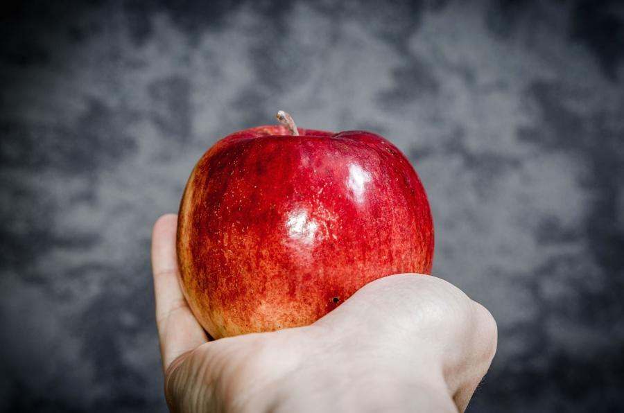 apple, fruit, food, diet, hand, sweet