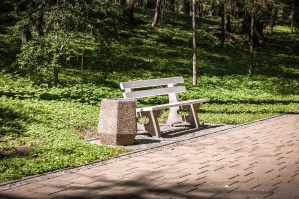 bench, park, grass, wood, garbage can, path