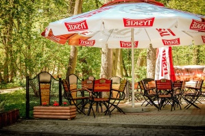 sunshade, table, chair, cafe, forest, park, tree, vacation