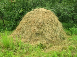 hay, fodder, knoll, food, landscape, field, rural