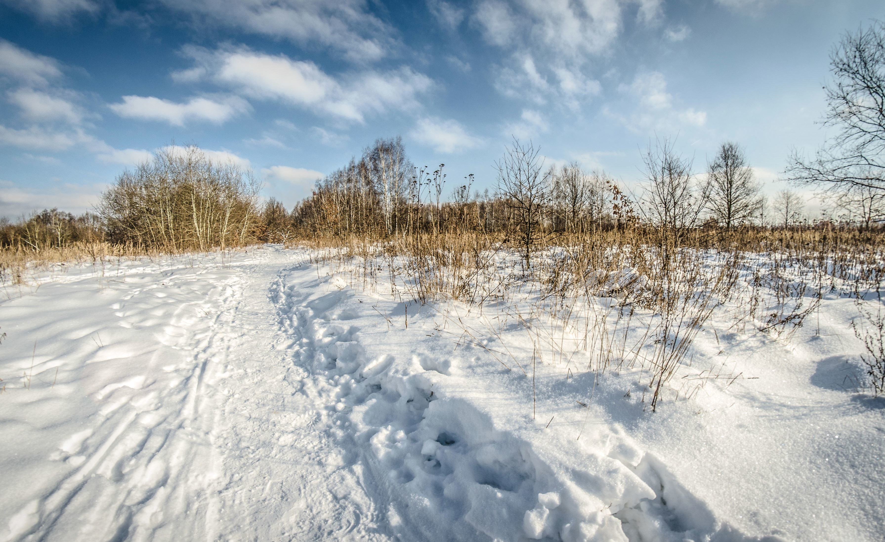 Free picture: ice, cold, snow, winter, landscape, frozen ...