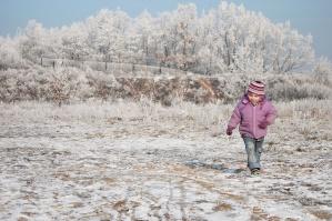 copil, copac, iarna, zapada, rece, pălărie, peisaj