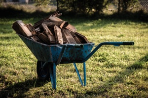 handcart, metal, firewood, grass, shadow