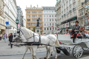 horse, carriage, man, city, people, attraction