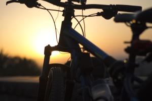solnedgång, cykel, fordon, metall, däck, skog