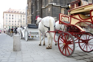 carriage, vehicle, horse, street, tree, wheel, city