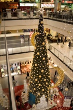 interior, fir, christmas, celebration, shop, people