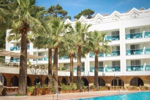 Hôtel, voyage, vacances, eau, mer, tourisme, été, piscine, palmier