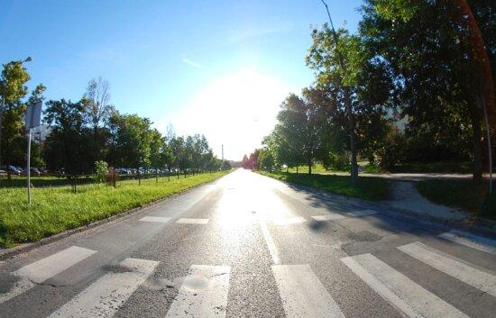 asphalt, road, sky, landscape, transportation, travel, drive, tree, sign, sun